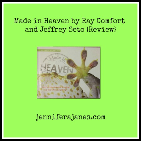 Made in Heaven by Ray Comfort and Jeffrey Seto Review jenniferajanes.com