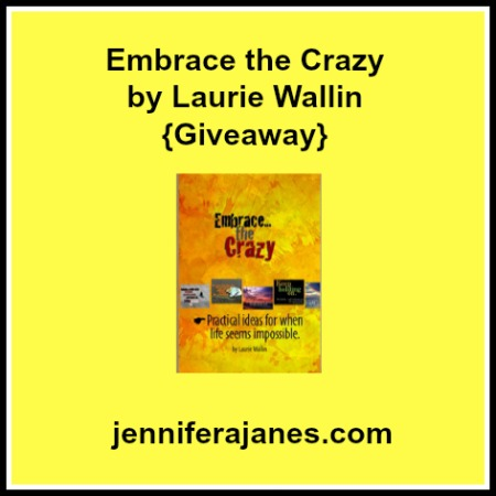 Embrace the Crazy by Laurie Wallin {Giveaway} - jenniferajanes.com