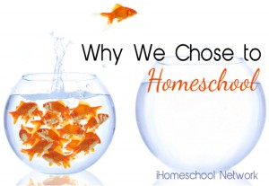 Why We Chose to Homeschool - iHomeschool Network