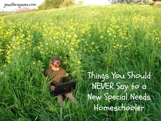 When a special needs homeschooler is starting out, there are certain things you should NEVER say to her. Here's a short list.